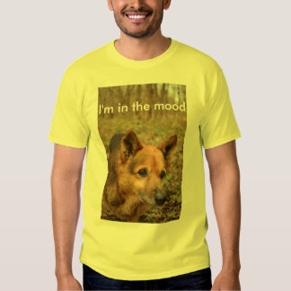 I'm in the Mood T-shirts