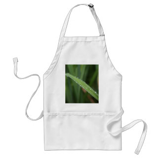 I'm just a blade of grass in the dew aprons