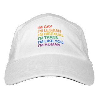 I'm LGBT Like You - Hat