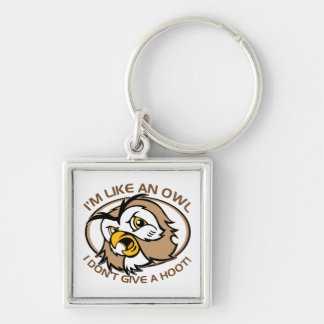 Im Like An Owl I Dont Give A Hoot Funny Saying Key Ring