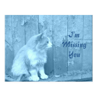 I'm Missing You/Blue Sahara postcard