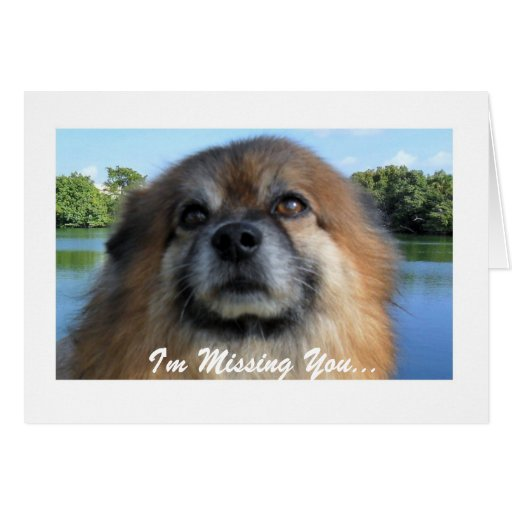 I'm Missing You...Greeting Card