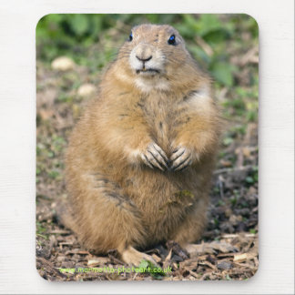 I'm not Fat, I'm Cuddly Mousemat