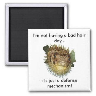 I'm not having a bad hair day - fridge magnets