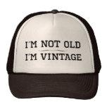 I'm Not Old, I'm Vintage (divider) Mesh Hat
