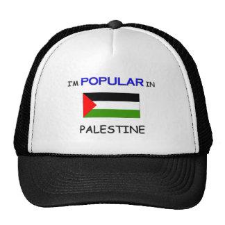 I'm Popular In PALESTINE Mesh Hat