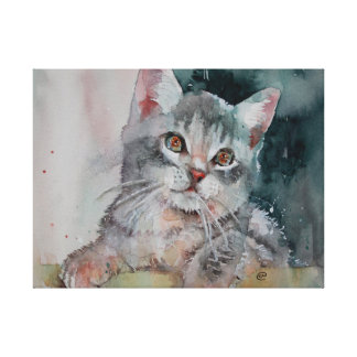 I'm Purrr-fect. Small Kitten Canvas Print