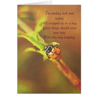 I'm sending luck..ladybug greetingcard greeting card