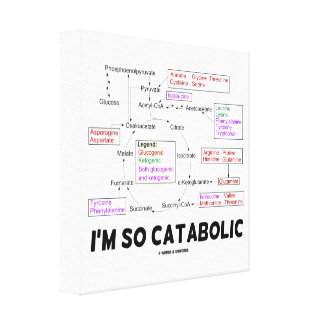 I'm So Catabolic Proteinogenic Amino Acids Canvas Print