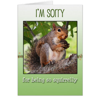 I'm sorry greeting card with squirrel