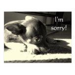 I'm sorry! postcards