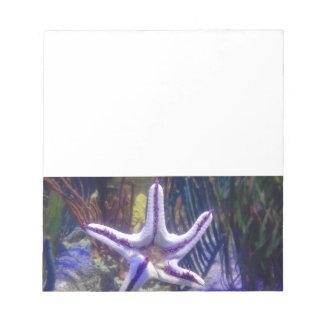 I'm stuck on you starfish notepad