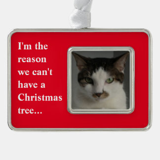 """""""I'm the Reason We Can't Have a Christmas Tree"""" Silver Plated Framed Ornament"""