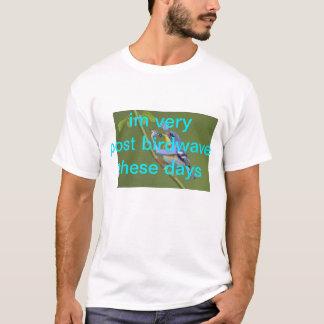 im very post birdwave these days T-Shirt