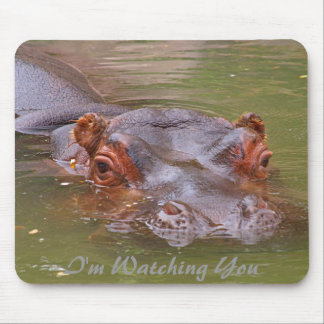 I'm Watching You Mouse Pad
