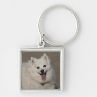 Image112a Key Ring