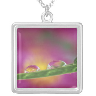 Image of asters formed in water droplets square pendant necklace