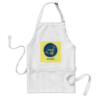 Image Of Flat Earth Standard Apron