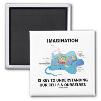 Imagination Is Key To Understanding Our Cells Magnet