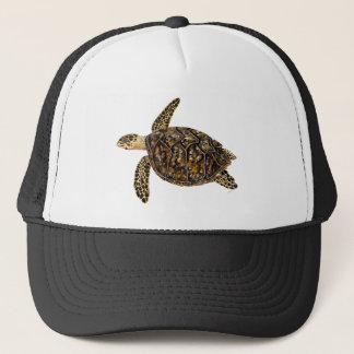 Imbricata turtle trucker hat