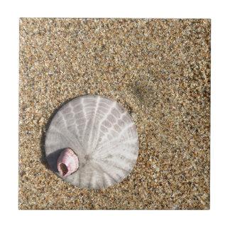 IMG_0578.JPG  Sandollar seashell on beach Ceramic Tile