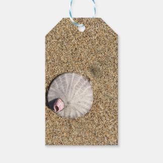 IMG_0578.JPG  Sandollar seashell on beach Gift Tags