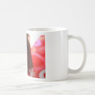 IMG_0737, GOT COFFEE? BASIC WHITE MUG