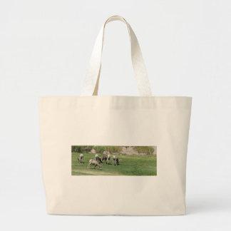 IMG_1180 (2)Big Horn Sheep Tote Bag