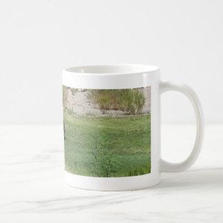 IMG_1180 (2)Big Horn Sheep Coffee Mug