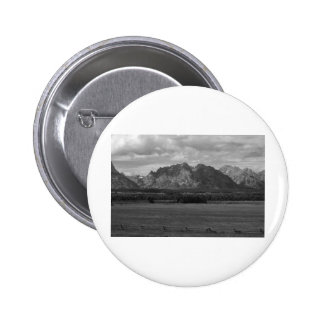 IMG_1510_black and white Pinback Button