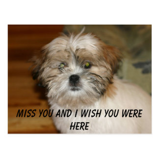 IMG_1531, Miss you and I wish you were here Postcard