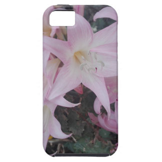 IMG_20170923_223401_360 iPhone 5 COVERS