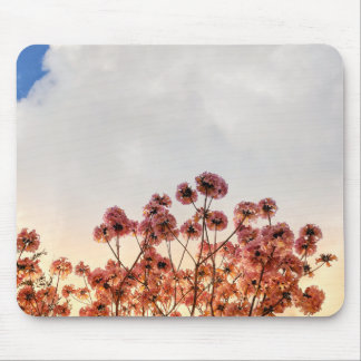 IMG_20180219_171439-01 MOUSE PAD