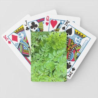 IMG_3126.JPG BICYCLE PLAYING CARDS