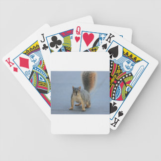 IMG_3601a.JPG Bicycle Playing Cards