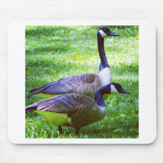 IMG_5228.JPG MOUSE PAD