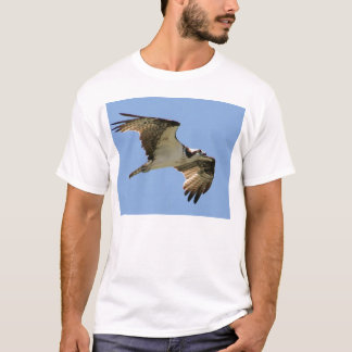 IMG_7599-11x9 T-Shirt