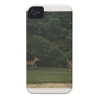 IMG_9284.JPG iPhone 4 COVER