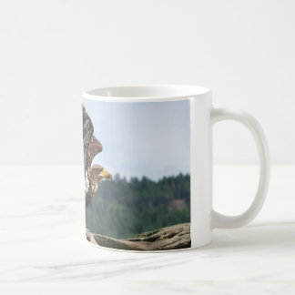 Immature Bald Eagle Ready For Takeoff Coffee Mug