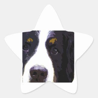 """IMPACT -color- Star Sticker"