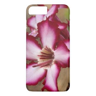 Impala Lily (Adenium Multiflorum), Kruger iPhone 7 Plus Case