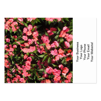 Impatiens Cluster Flowers Red Business Card