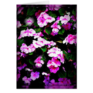 Impatiens pink & green card