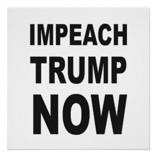 IMPEACH TRUMP NOW Protest Sign