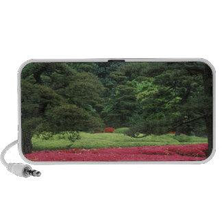 Imperial Palace Garden, Tokyo, Japan Mini Speaker
