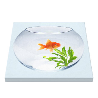 Impression on tended fabric (subdue), Goldfish Canvas Print