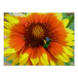 Impressionistic Blue Bee and Flower Poster