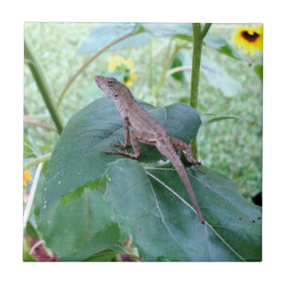 Impressive Brown Anole Lizard on Sunflower Leaf Small Square Tile
