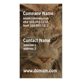 Impressive Lynx Pack Of Standard Business Cards