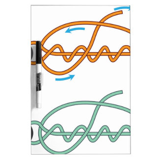 Improved clinch knot diagram two color version dry erase whiteboards